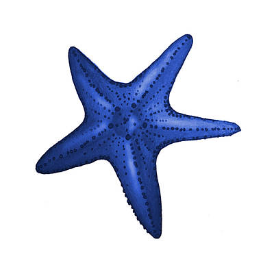 Patriotic Digital Art - Nautical Blue Starfish by Michelle Eshleman