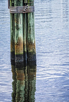 Photograph - Nautical Mooring Dolphin by Carolyn Marshall