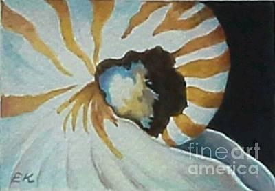 Painting - Nautilus by Edoen Kang
