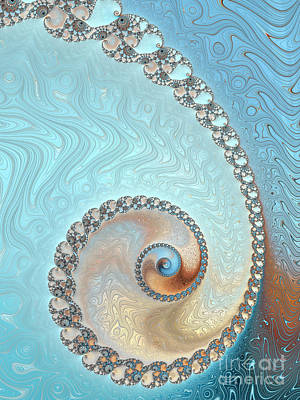 Photograph - Nautilus - Sea And Sand by Heidi Smith