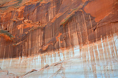Photograph - Navajo Canyon Wall Tapestry by Debra Thompson