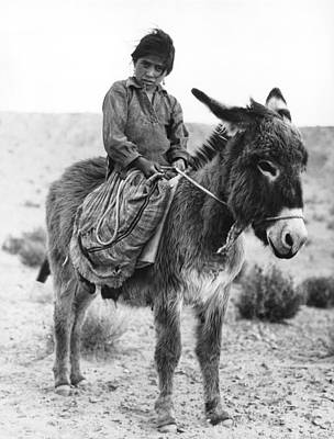 Burros Photograph - Navajo Herder by Underwood Archives