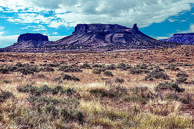 Digital Art - Navajo Reservation Series 1 by Bob and Nadine Johnston