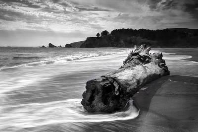 Sausalito Photograph - Navarro Beach State Park by Chris Frost