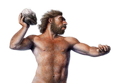 Fossil Man Photograph - Neanderthal Throwing A Rock by Mauricio Anton
