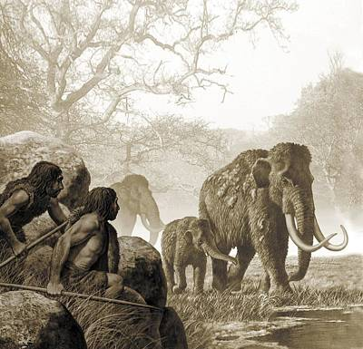 Mammoth Photograph - Neanderthals Hunting Mammoth, Artwork by Science Photo Library