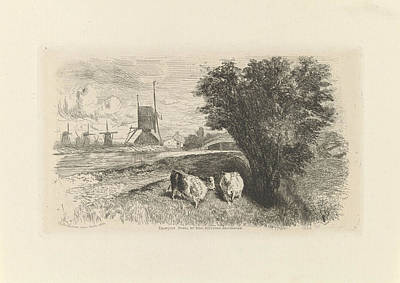 Charles River Drawing - Near A Road, In A Landscape, There Are Two Cows by Artokoloro