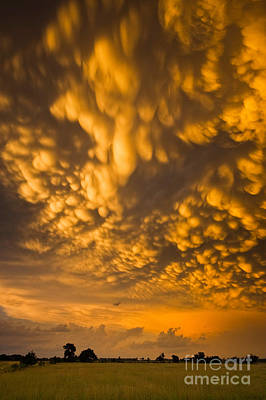 Photograph - Nebraska Mammatus by Mike Hollingshead