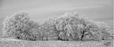 Photograph - Nebraska Winters by A Hint of Color Photography