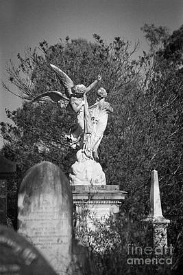 Photograph - Necropolis 01 by Colin and Linda McKie