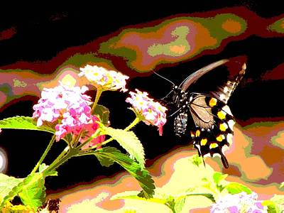 Photograph - Nectar by Linda Cox