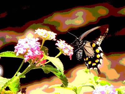 Photograph - Nectar by Linda Cox