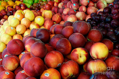 Photograph - Nectarines At Rest by Vinnie Oakes