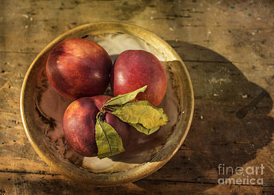 Photograph - Nectarines In A Bowl by Terry Rowe