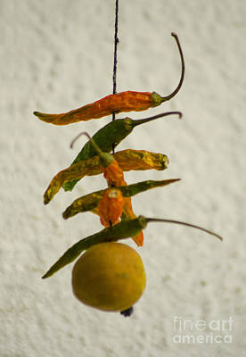 Neembu Mirch  Lemon N Chillies Art Print by Vineesh Edakkara