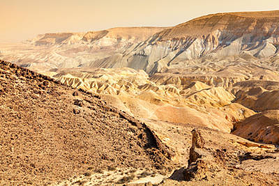 Giuseppe Cristiano Royalty Free Images - Negev Desert Royalty-Free Image by Alexey Stiop