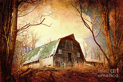 Neglected Art Print by A New Focus Photography