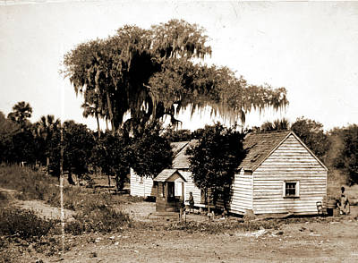 Negro Cabin And Oaks, Florida, Jackson, William Henry Art Print