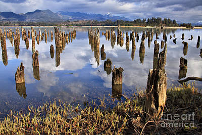 Photograph - Nehalem Bay Vista by Stuart Gordon