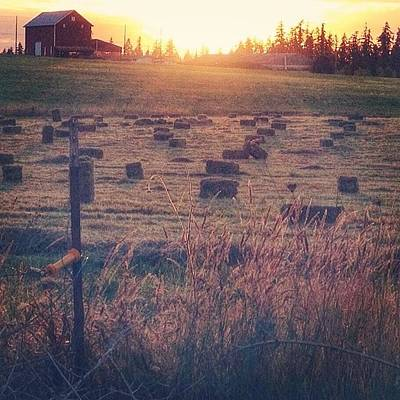 Sunset Photograph - Neighboring Farm At Sunset...have A by Blenda Studio