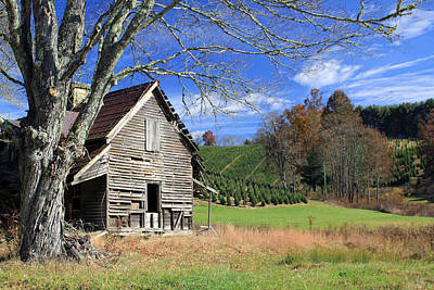 Cullowhee Photograph - Nell's House by Jennifer Robin