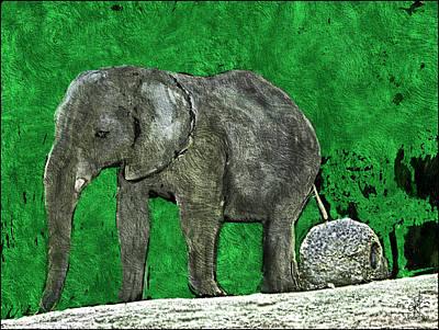 Digital Art - Nelly The Elephant by Pennie McCracken