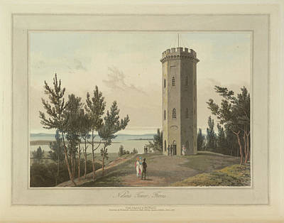 Nelson's Tower At Forres Art Print by British Library