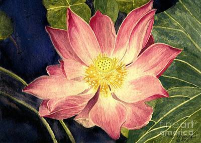 Painting - Nelumbo Nucifera I by Melly Terpening