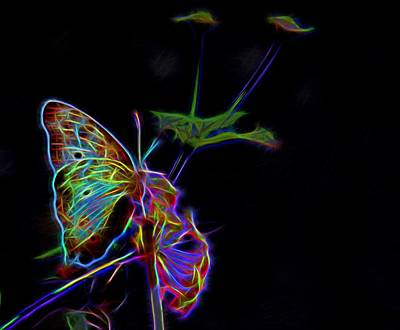 Photograph - Neon Butterfly by Judy Vincent