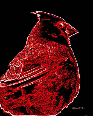 Photograph - Neon Cardinal by T Guy Spencer