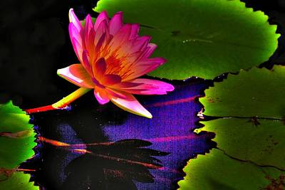 Neon Lily Original by John Absher