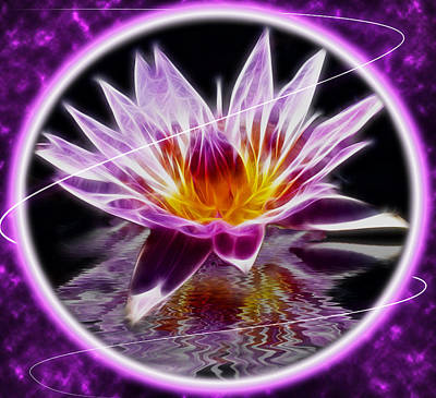 Reflection Photograph - Neon Lotus by Shane Bechler