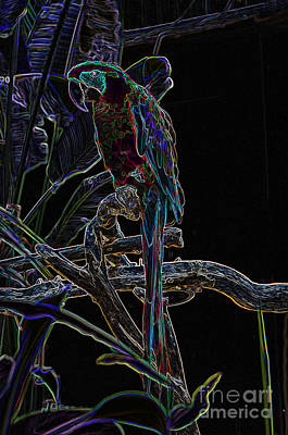 Digital Art - Neon Parrot by Louise Magno