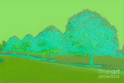 Photograph - Neon Trees Green by Karen Adams