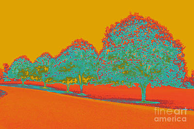 Digital Art - Neon Trees In The Fall by Karen Adams