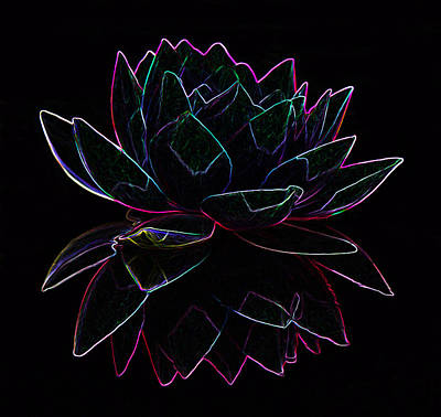 Photograph - Neon Water Lily by Mary Castellan