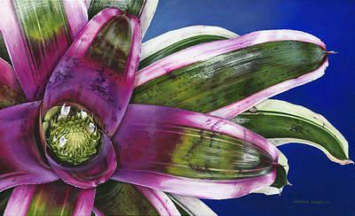 Neoregelia Painting - Neoregelia Terrie Bert by Urszula Dudek