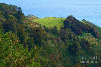 Photograph - Nepenthe View At Big Sur In California by Charlene Mitchell
