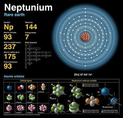 Atomic Photograph - Neptunium by Carlos Clarivan