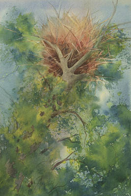 Painting - Nest At The Catherdral Pines by Johanna Axelrod