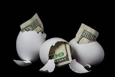 Nest Egg Original by Danny Goodwin