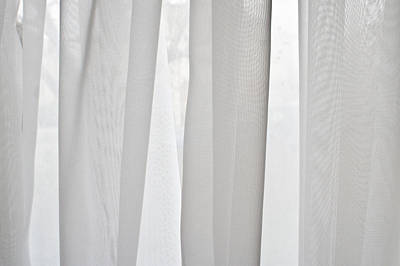 Grid Photograph - Net Curtain by Tom Gowanlock