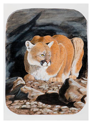 Painting - Nevada Cougar by Darcy Tate