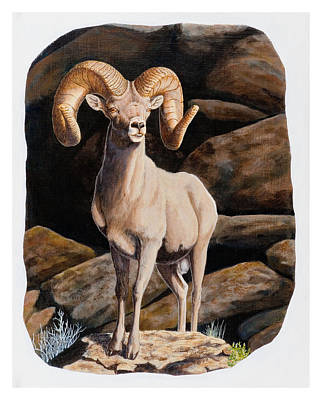 Painting - Nevada Desert Bighorn by Darcy Tate