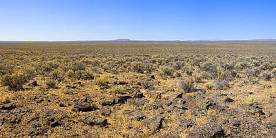 Photograph - Nevada Desert Panorama by Mark Greenberg