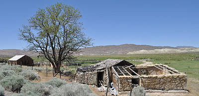 Photograph - Nevada Homestead by Everett Bowers