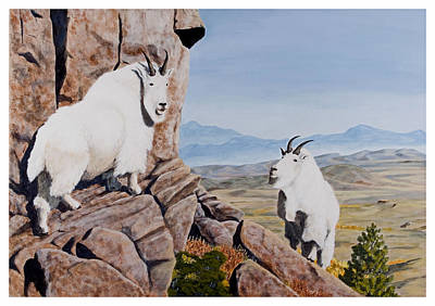Painting - Nevada Mountain Goats by Darcy Tate