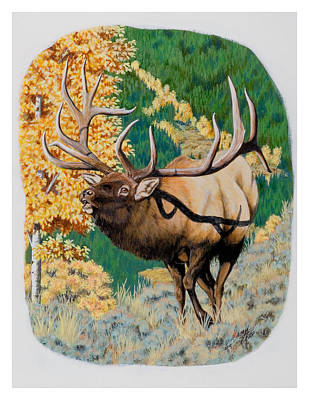 Nevada Nontypical Elk Art Print