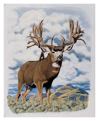 Painting - Faria Nevada Nontypical Mule Deer by Darcy Tate