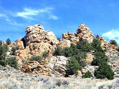 Photograph - Nevada Rock Formations 1 by Will Borden